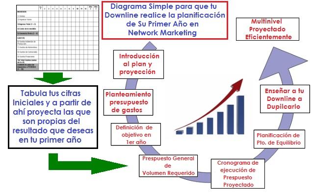 Proyección para tu Nuevo Downline en Su Primer Año en Network Marketing